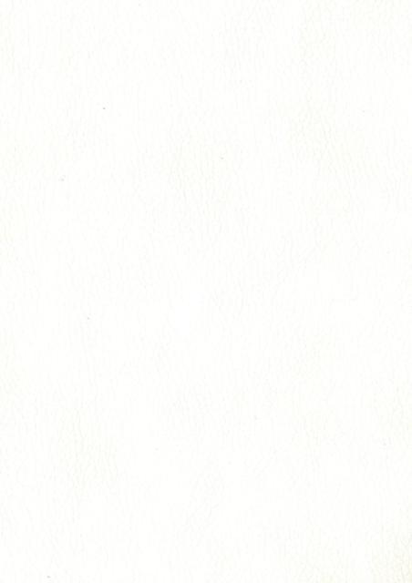 Искусственная кожа Santorini402 (1 категория)