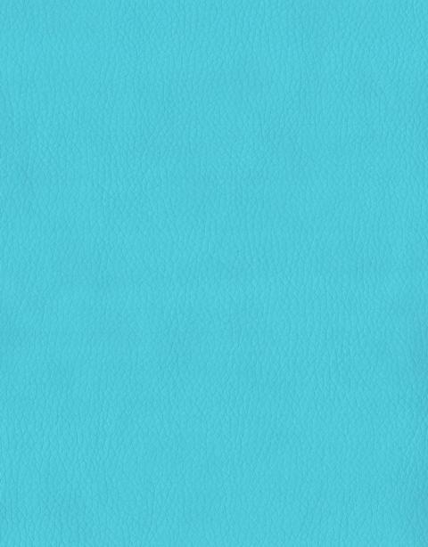 Искусственная кожа Santorini405 (1 категория)