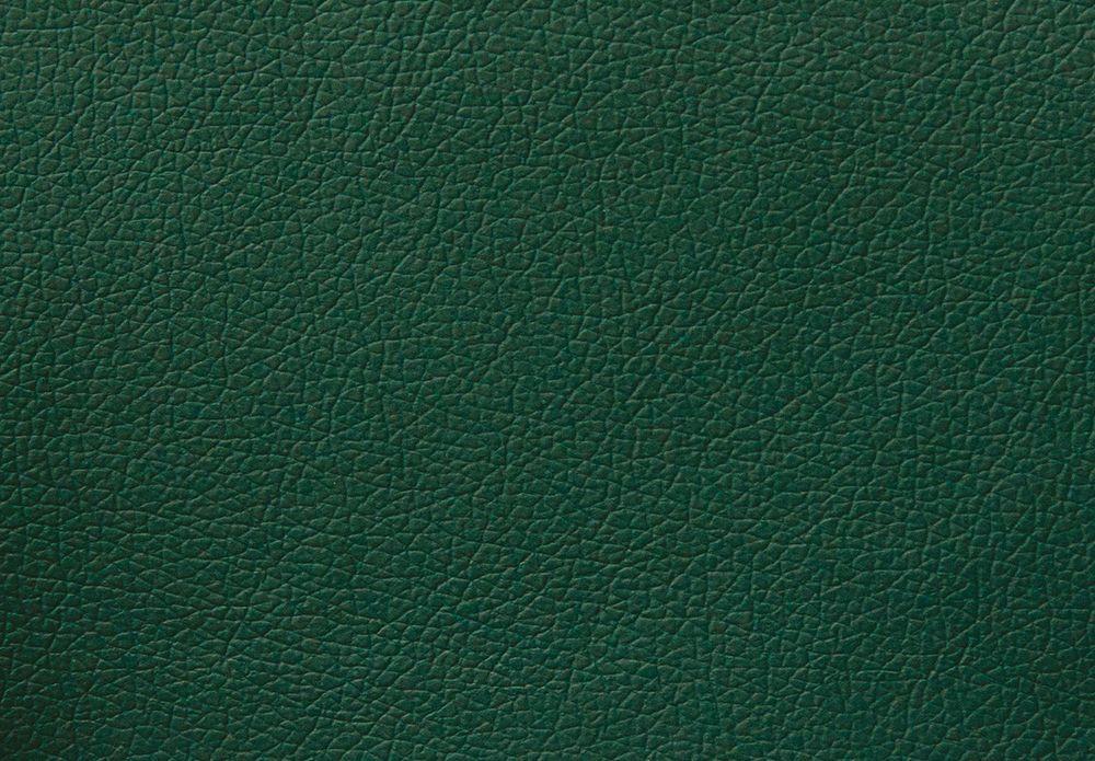 Искусственная кожа Domus green (2 категория)