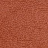 Искусственная кожа ECO113