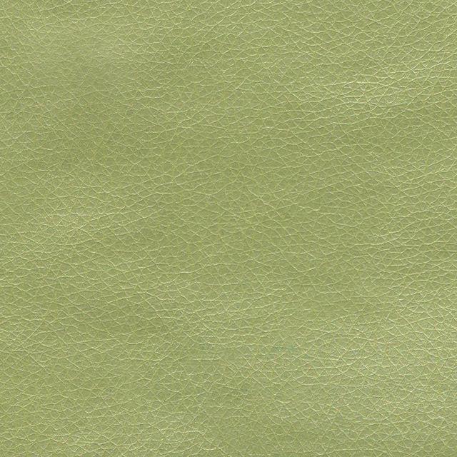 Искусственная кожа зелёный